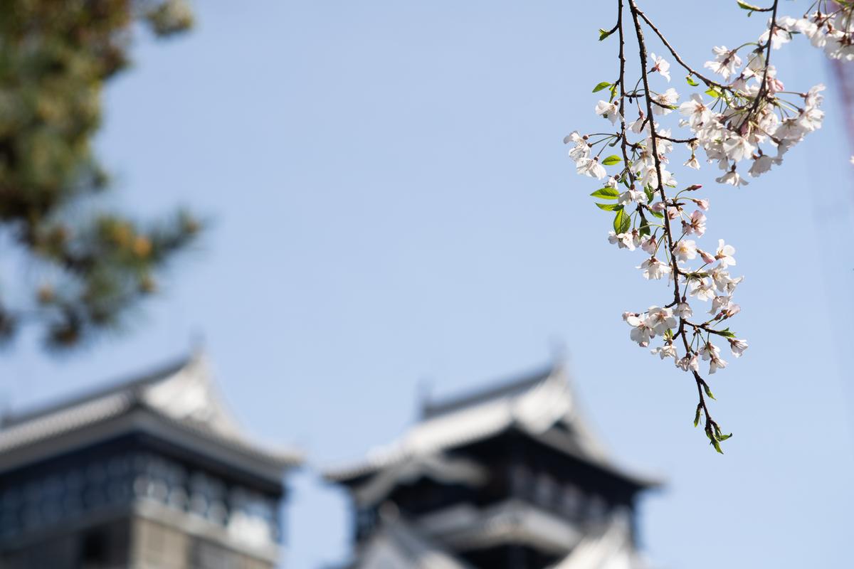 f:id:yuseiphotos:20200527144243j:plain