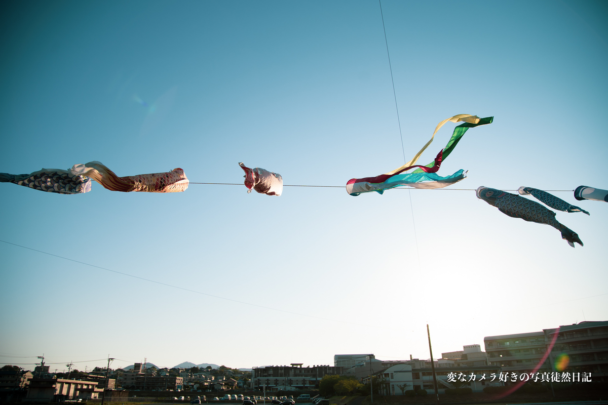 f:id:yuseiphotos:20200712170625j:plain