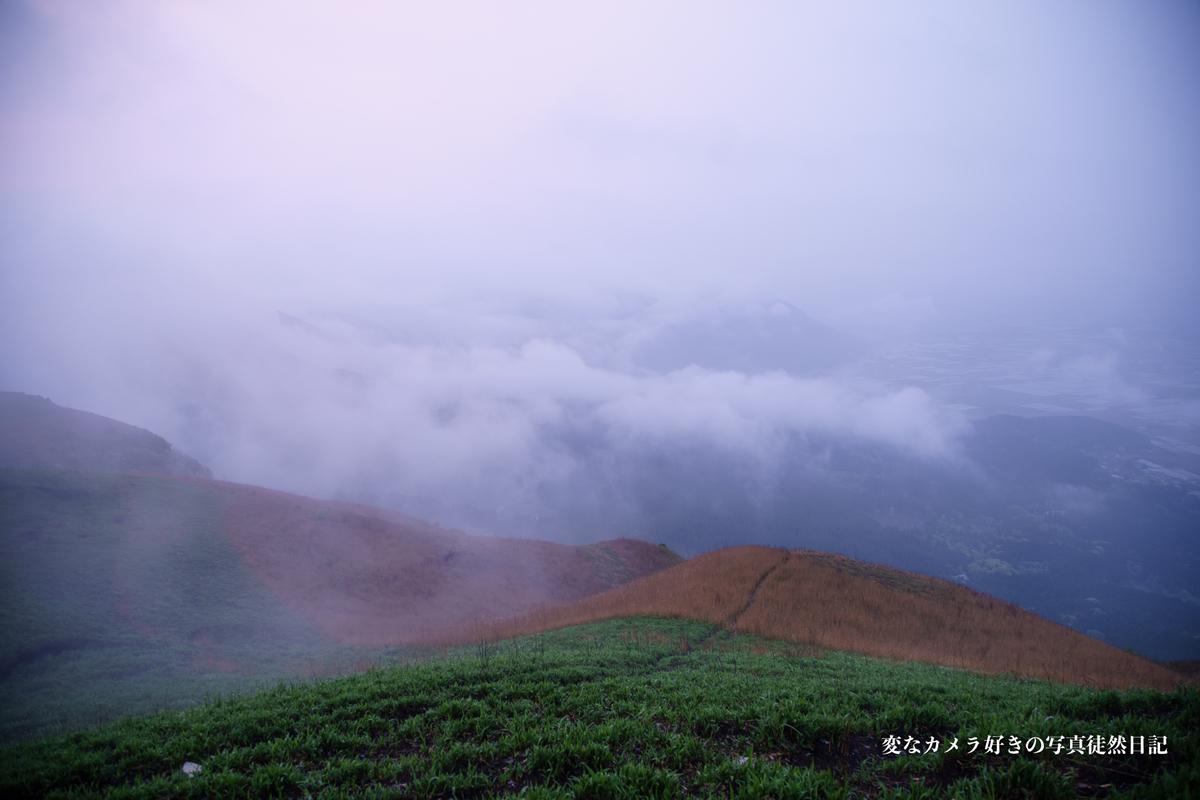 f:id:yuseiphotos:20200718184437j:plain