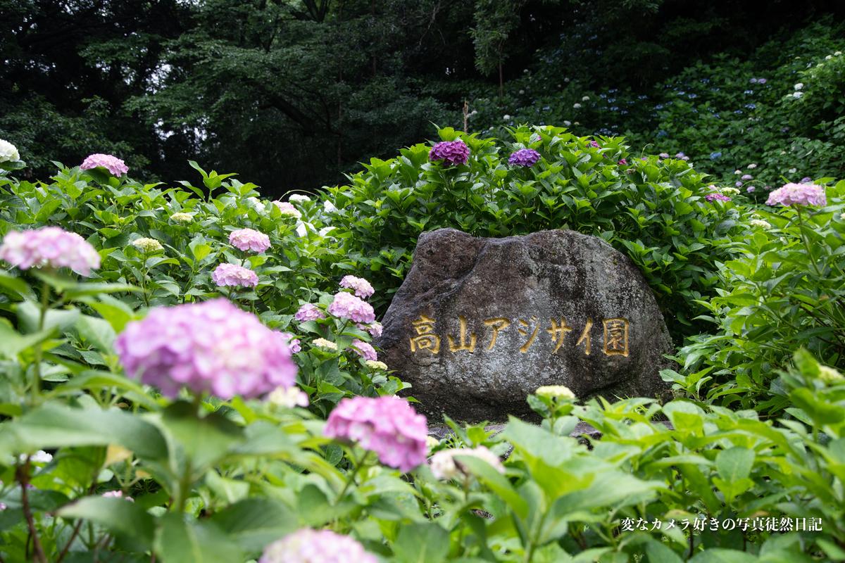 f:id:yuseiphotos:20200801064550j:plain