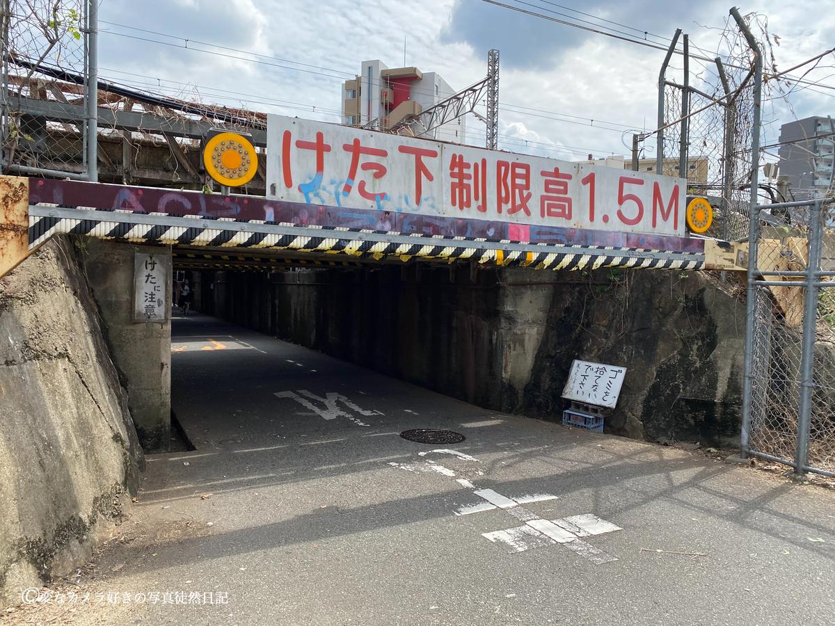 f:id:yuseiphotos:20200924113727j:plain