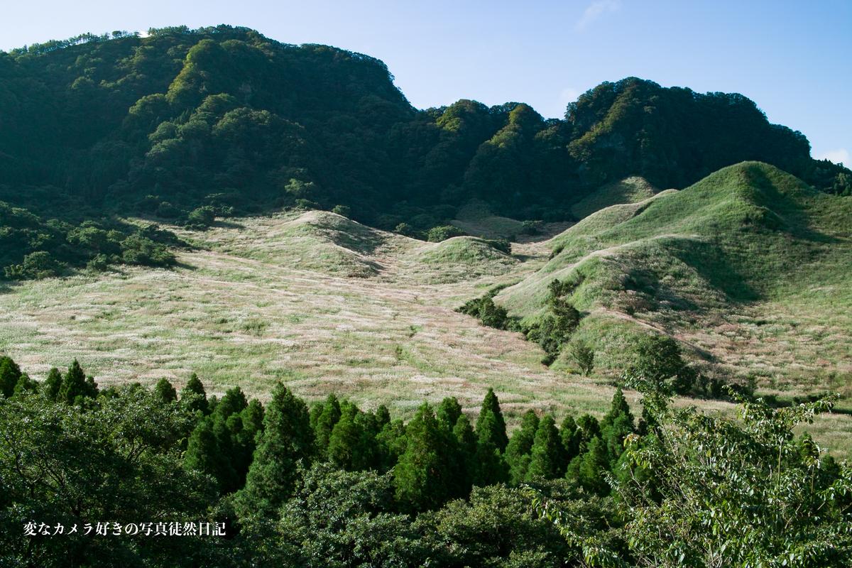 f:id:yuseiphotos:20201101230217j:plain