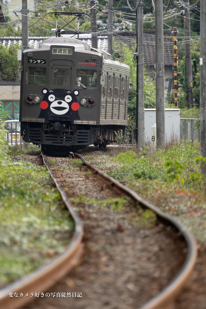 f:id:yuseiphotos:20201108001023j:plain
