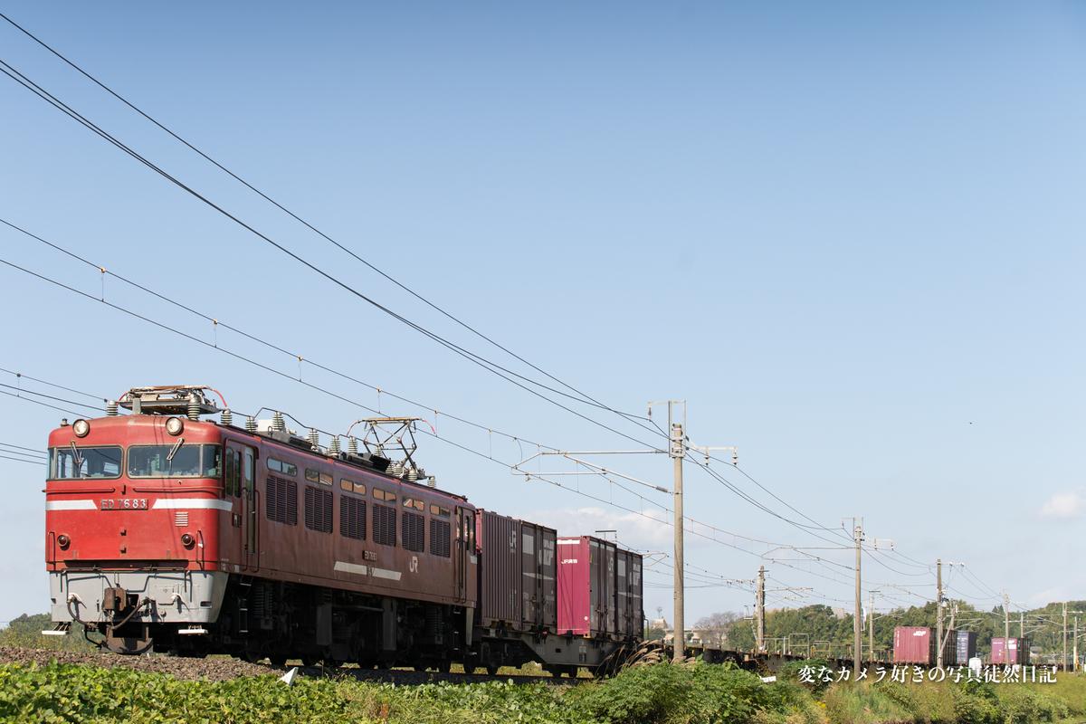 f:id:yuseiphotos:20201119011738j:plain