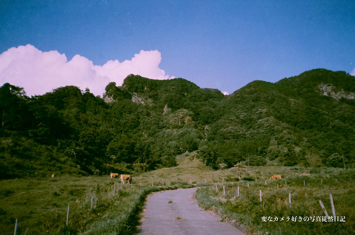 f:id:yuseiphotos:20210228183110j:plain