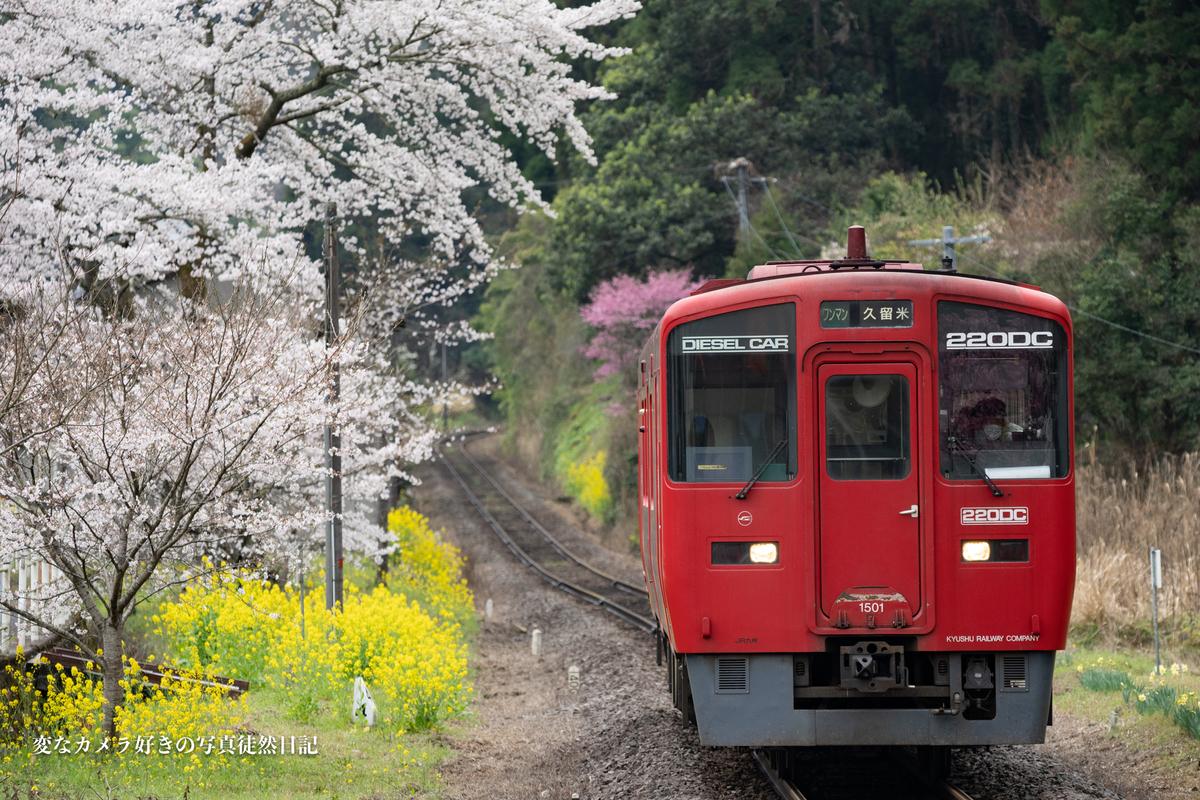 f:id:yuseiphotos:20210323235747j:plain