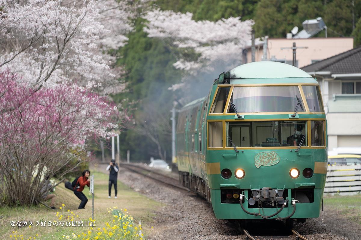 f:id:yuseiphotos:20210323235815j:plain