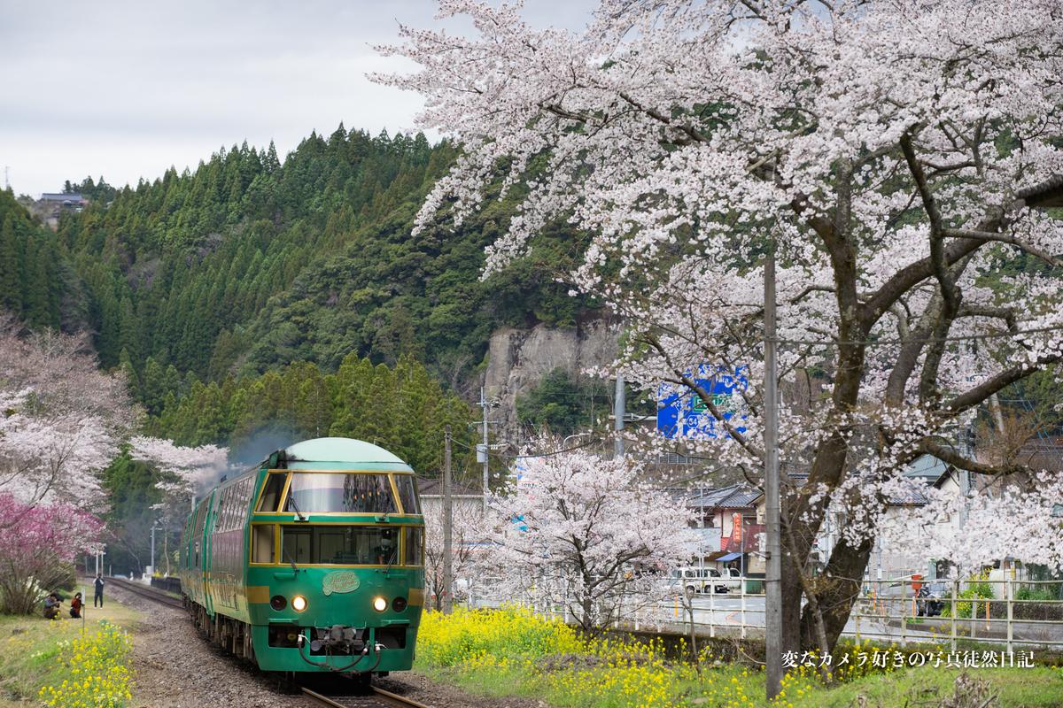 f:id:yuseiphotos:20210323235837j:plain