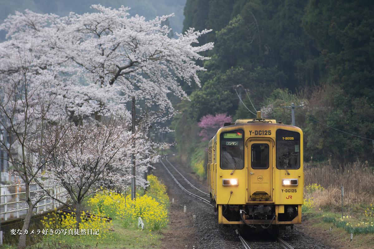 f:id:yuseiphotos:20210324002149j:plain