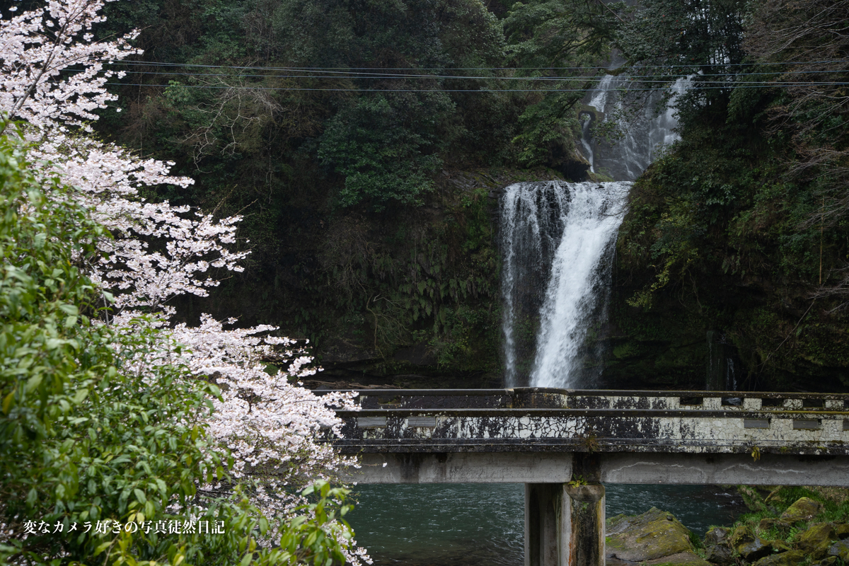 f:id:yuseiphotos:20210329005848j:plain