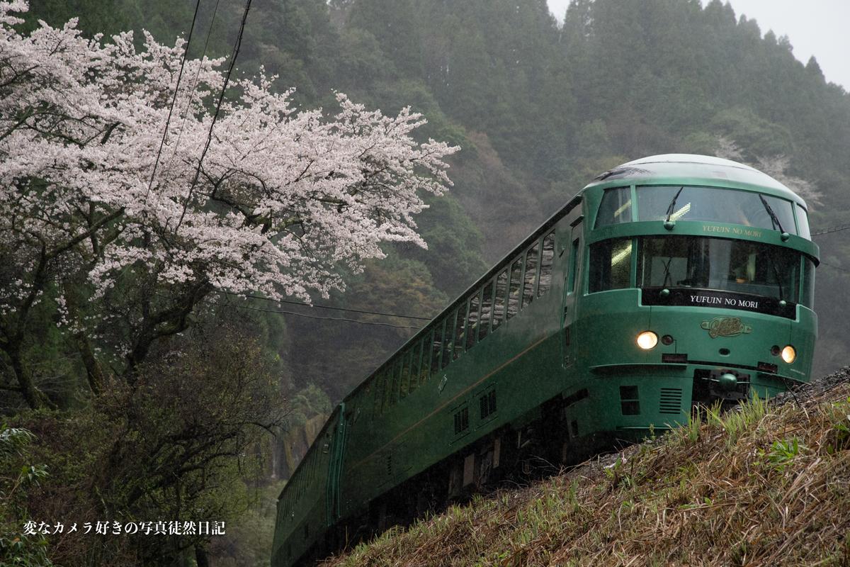 f:id:yuseiphotos:20210330010032j:plain