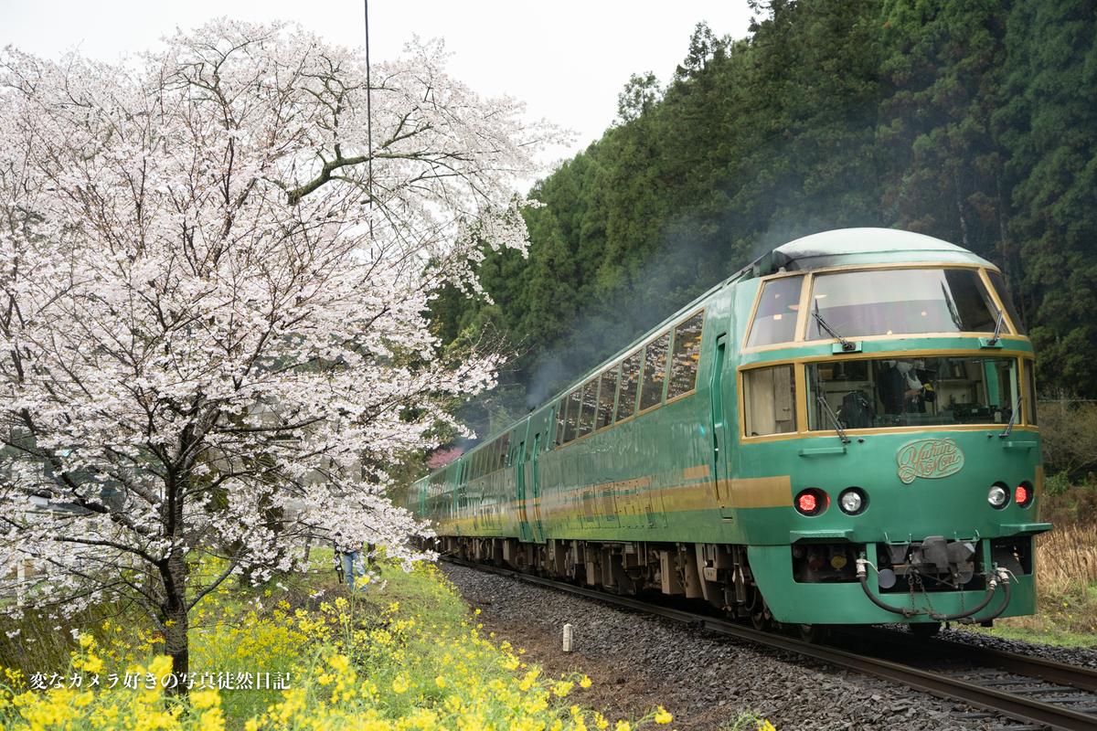 f:id:yuseiphotos:20210330010052j:plain