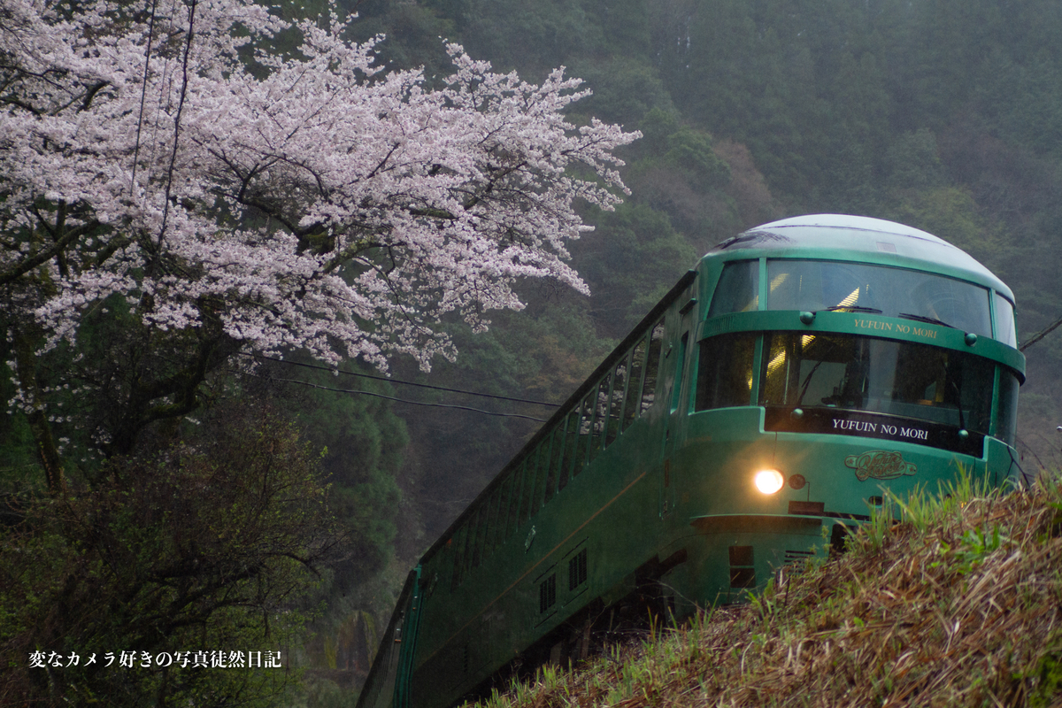 f:id:yuseiphotos:20210330010100j:plain