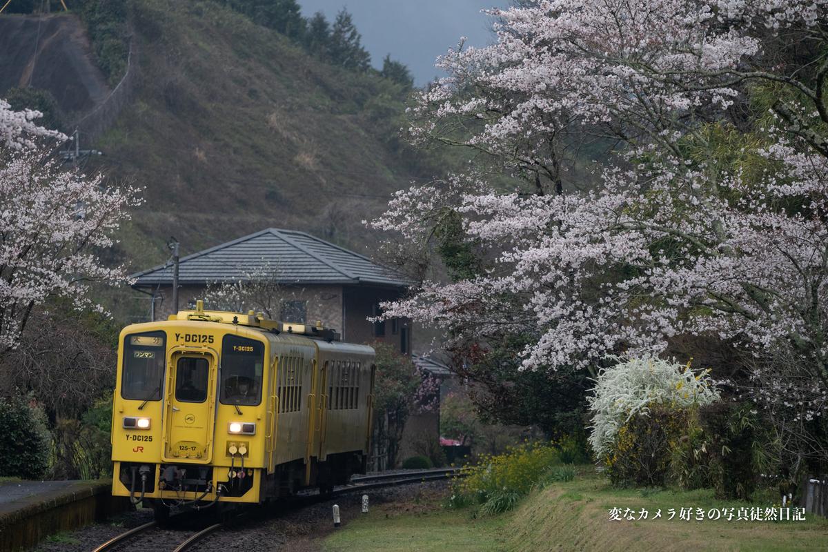 f:id:yuseiphotos:20210403032507j:plain