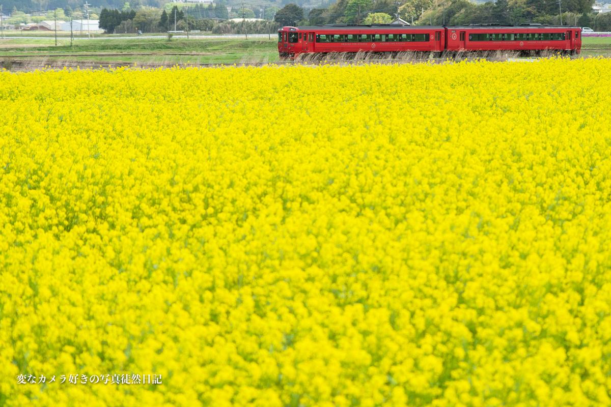 f:id:yuseiphotos:20210425234139j:plain