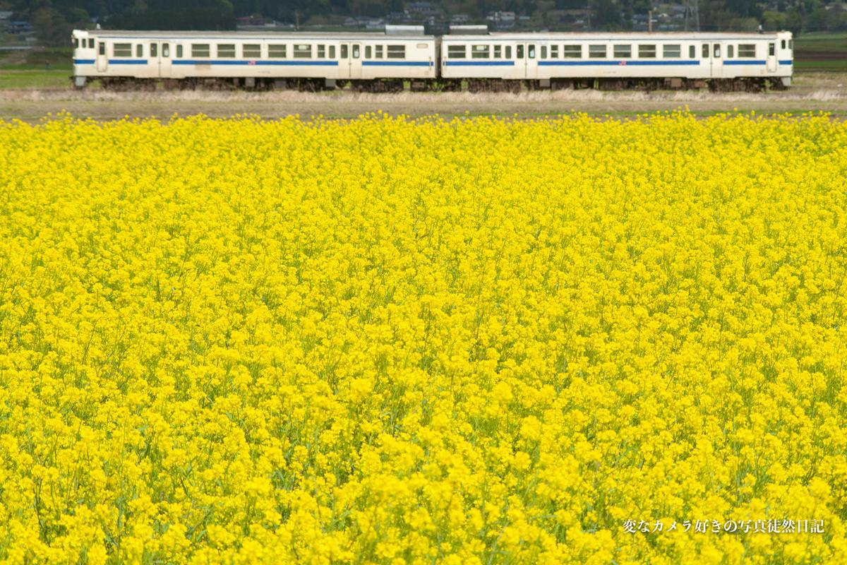 f:id:yuseiphotos:20210426215537j:plain