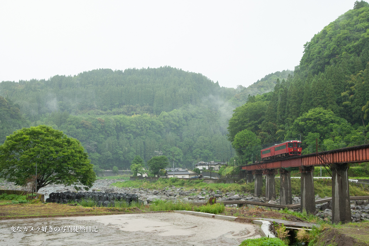 f:id:yuseiphotos:20210521141132j:plain