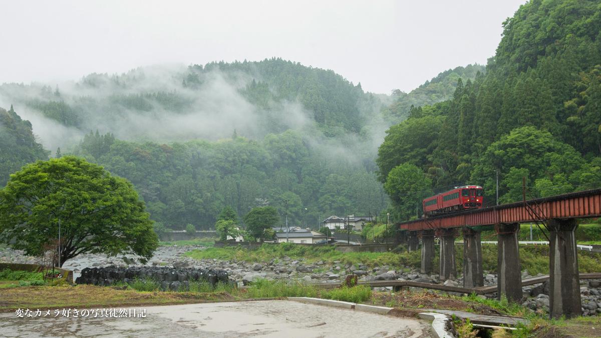 f:id:yuseiphotos:20210522045743j:plain