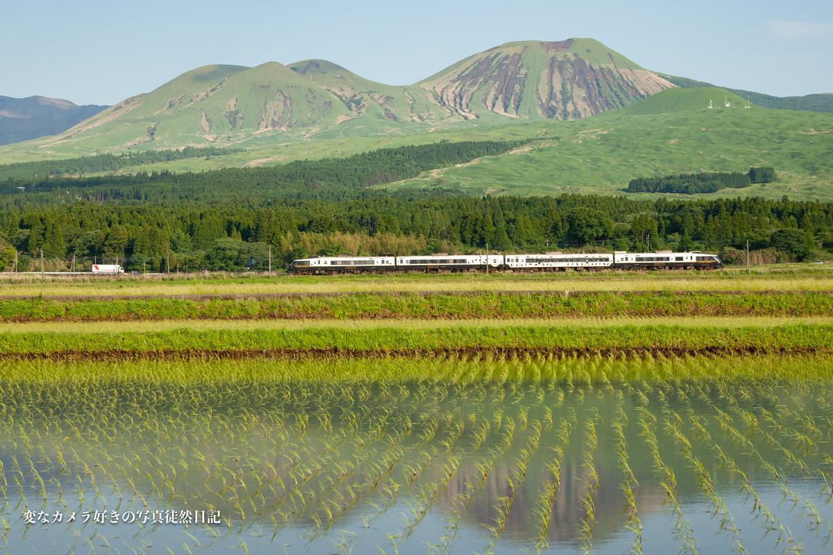 f:id:yuseiphotos:20210528003450j:plain
