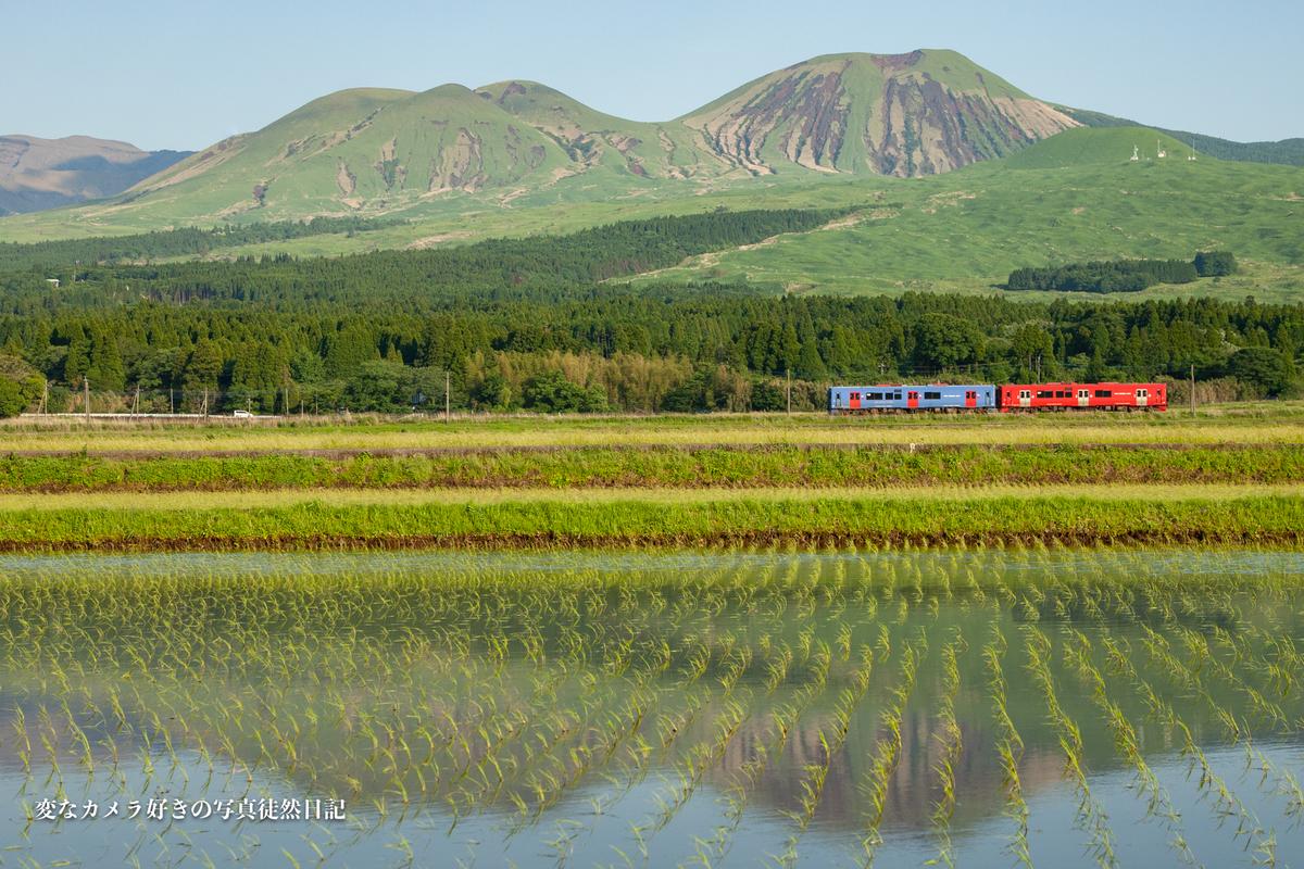 f:id:yuseiphotos:20210528003505j:plain
