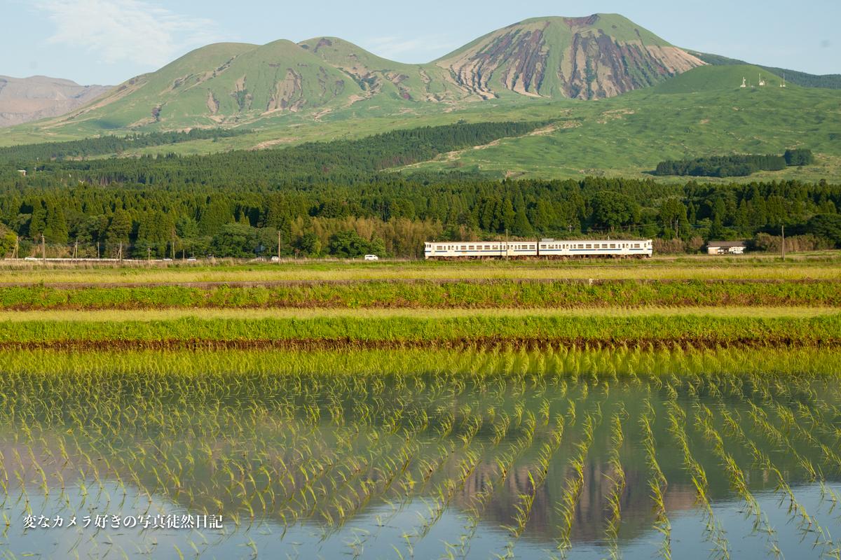 f:id:yuseiphotos:20210528003518j:plain