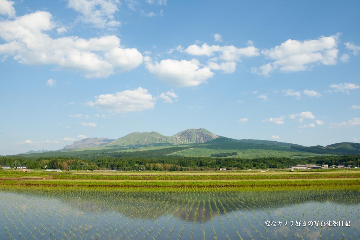 f:id:yuseiphotos:20210528005103j:plain