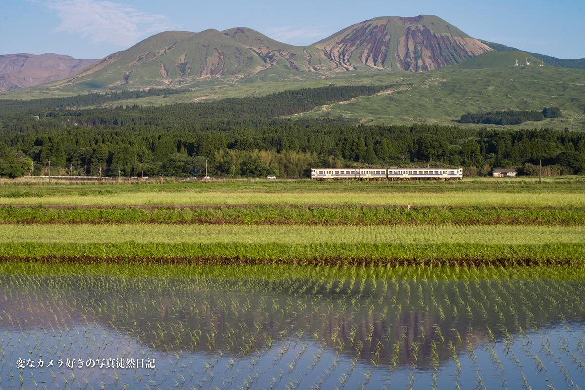 f:id:yuseiphotos:20210528011702j:plain