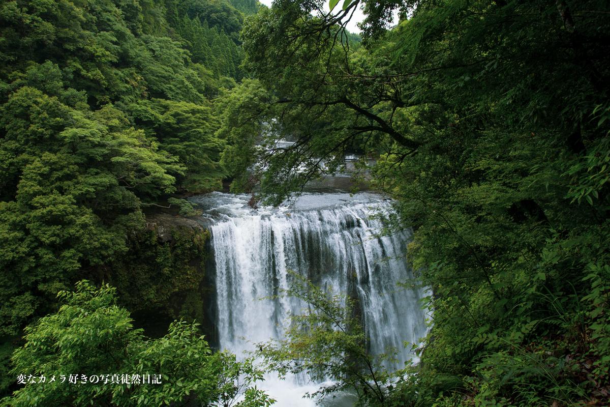 f:id:yuseiphotos:20210610001326j:plain
