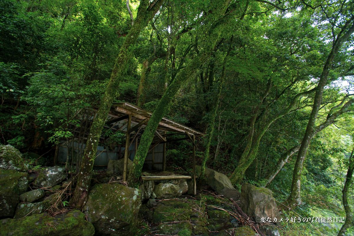 f:id:yuseiphotos:20210610001428j:plain