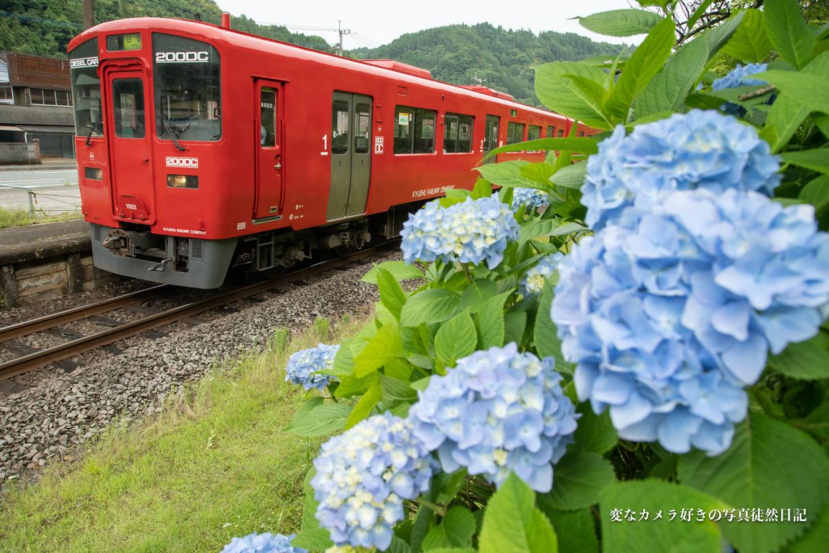 f:id:yuseiphotos:20210619120910j:plain