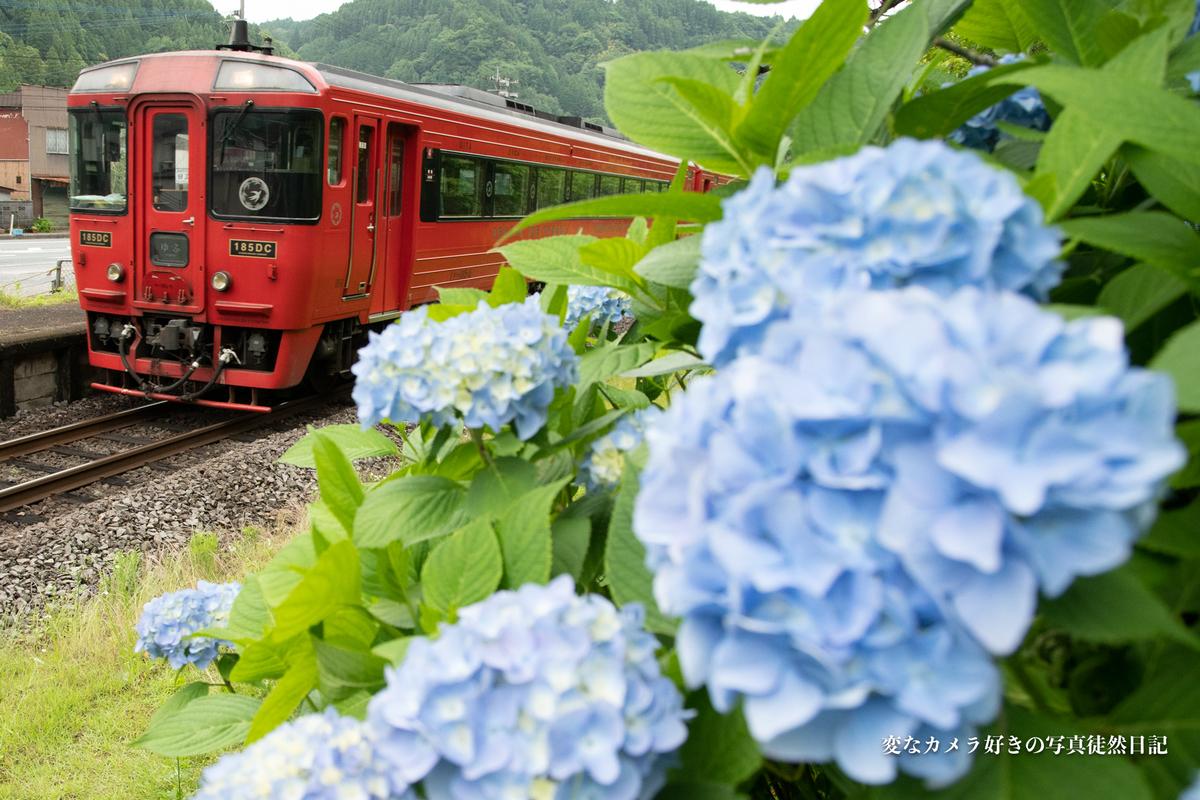 f:id:yuseiphotos:20210619120921j:plain