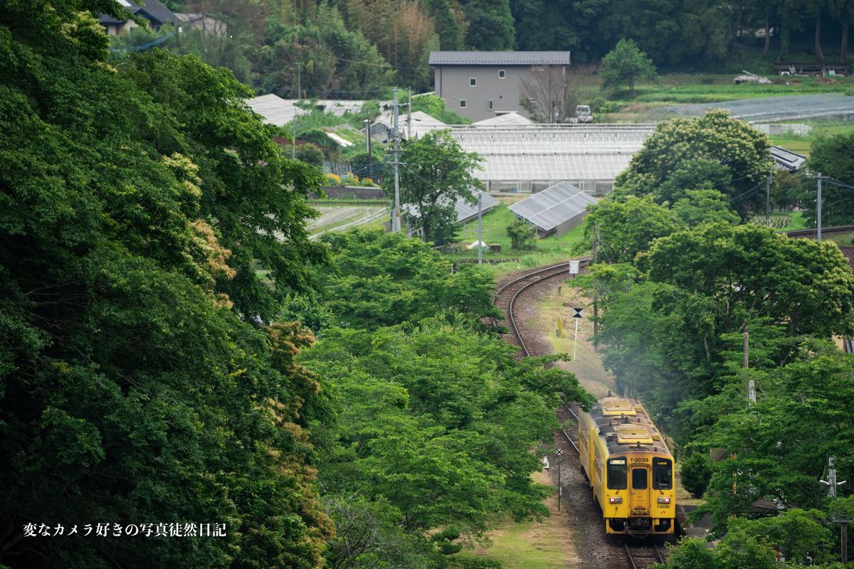 f:id:yuseiphotos:20210619120931j:plain