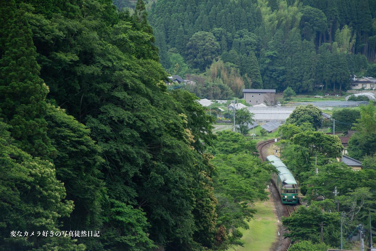 f:id:yuseiphotos:20210619121026j:plain