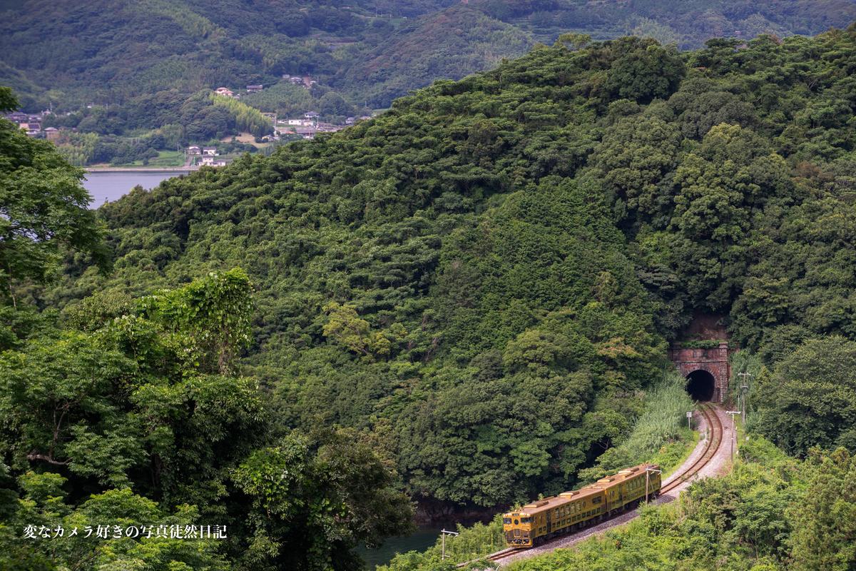 f:id:yuseiphotos:20210727012454j:plain