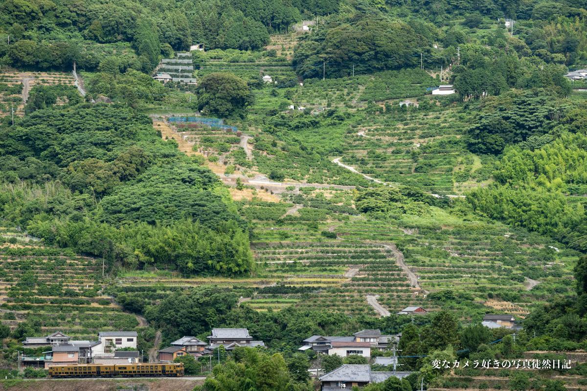 f:id:yuseiphotos:20210727012629j:plain