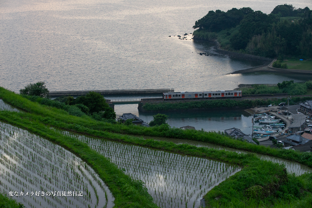 f:id:yuseiphotos:20210728200525j:plain