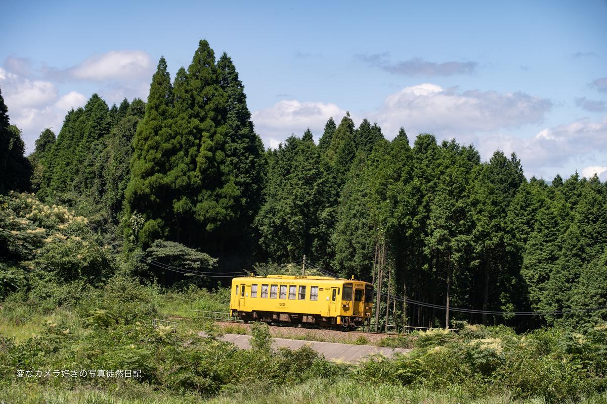 f:id:yuseiphotos:20210911171948j:plain