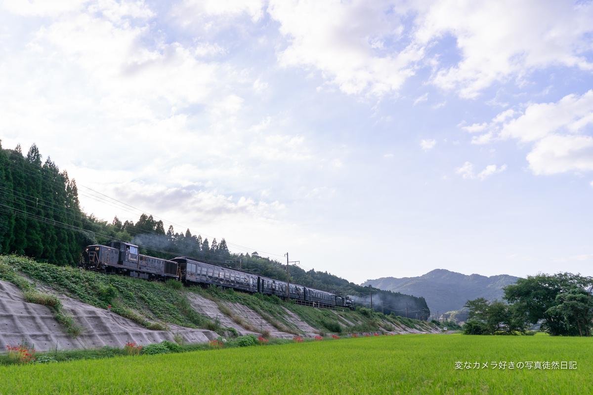 f:id:yuseiphotos:20211005014627j:plain