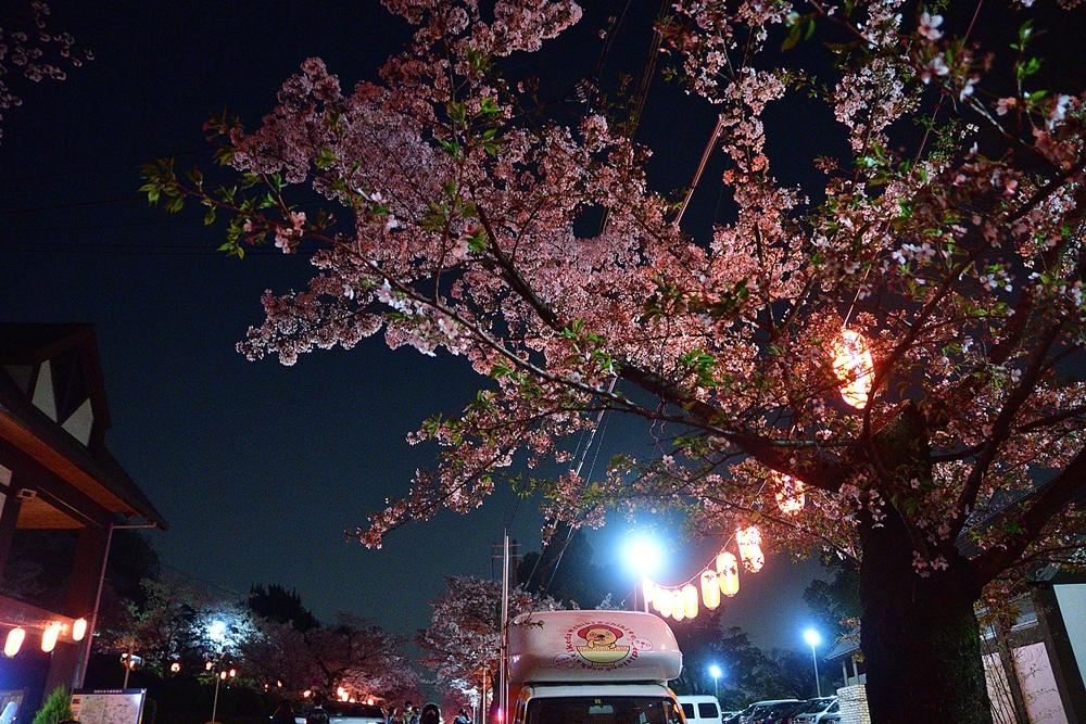 f:id:yushi1028:20180402201451j:plain