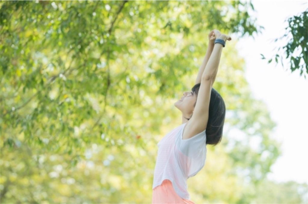 f:id:yushunchi:20200215181851j:image