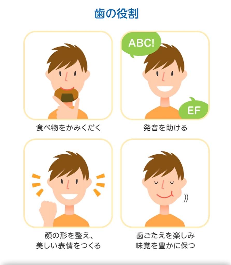 f:id:yushunchi:20200215232856j:image