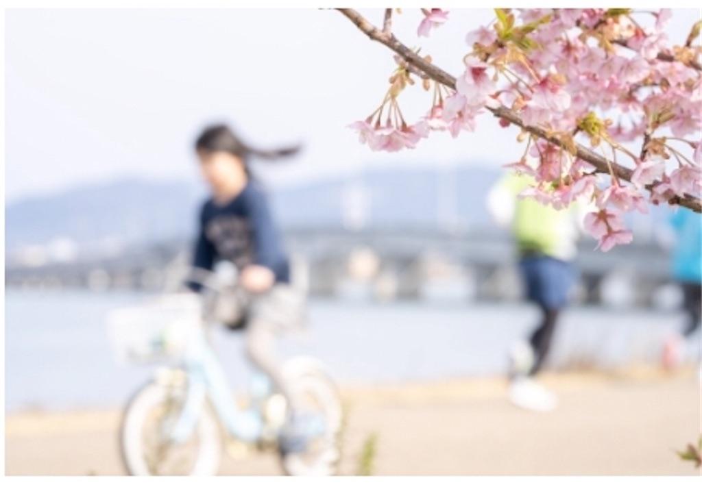 f:id:yushunchi:20200319175007j:image