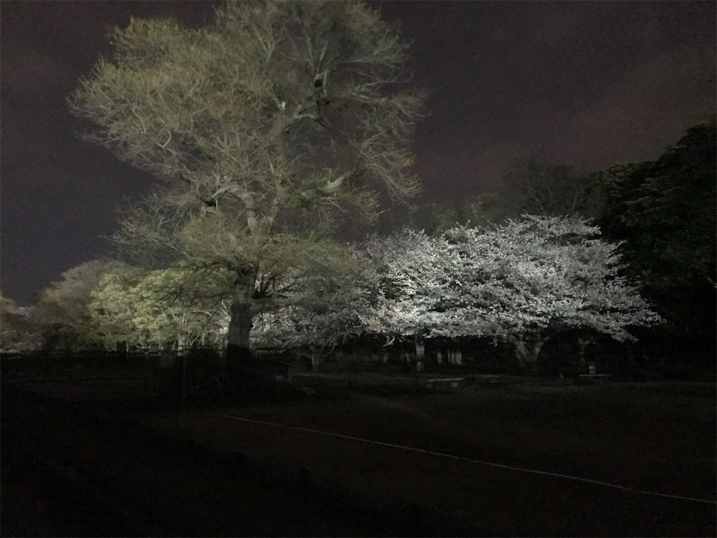 f:id:yushunchi:20200404024411j:image