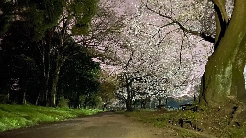f:id:yushunchi:20200404025332j:image