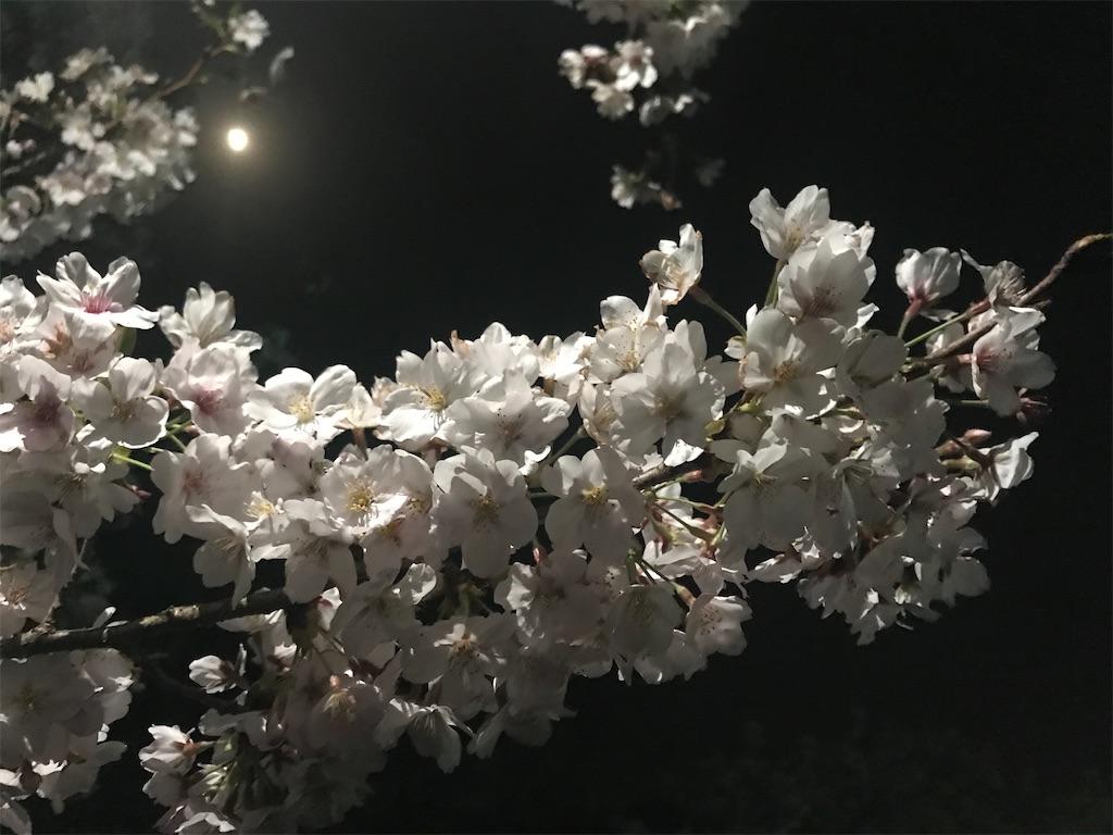 f:id:yushunchi:20200404030038j:image