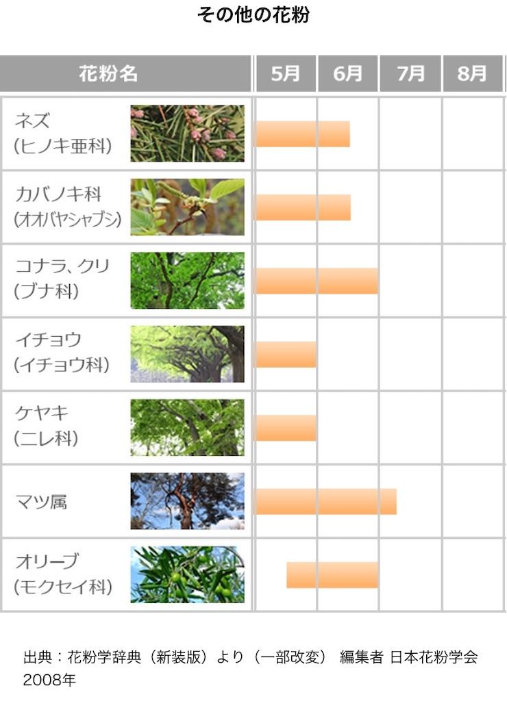 f:id:yushunchi:20200525045559j:image
