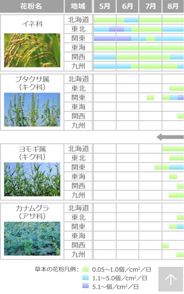 f:id:yushunchi:20200525045602j:image