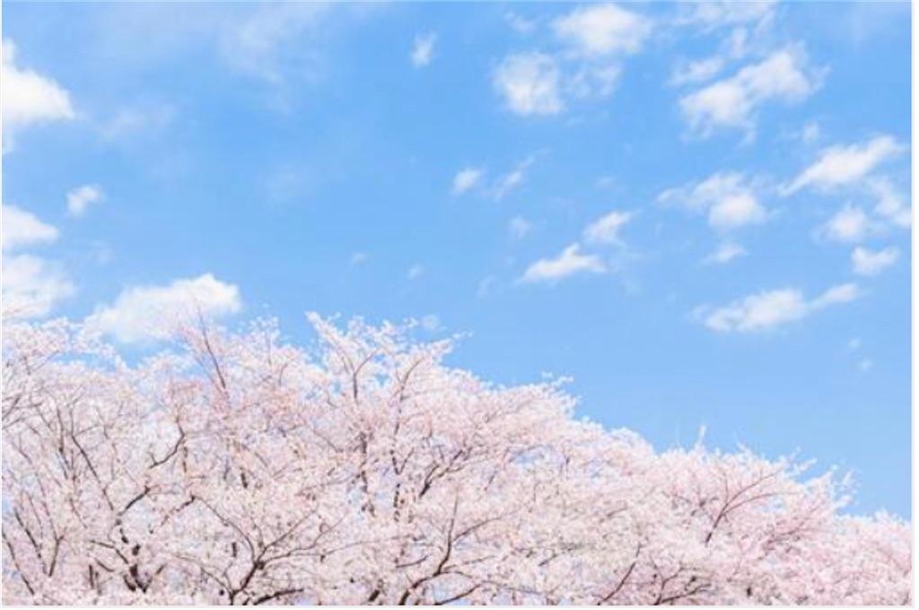 f:id:yushunchi:20210316080830j:plain
