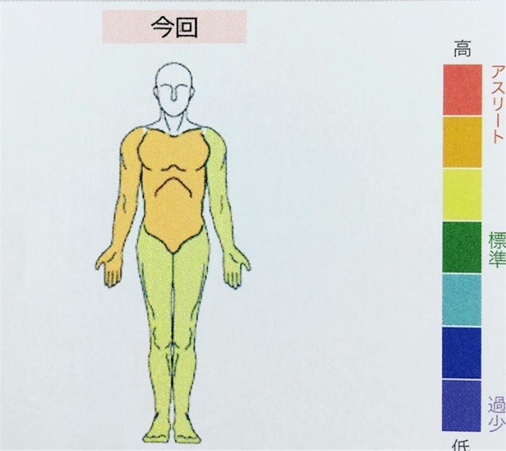 f:id:yusuke0530kun:20190730223635j:image