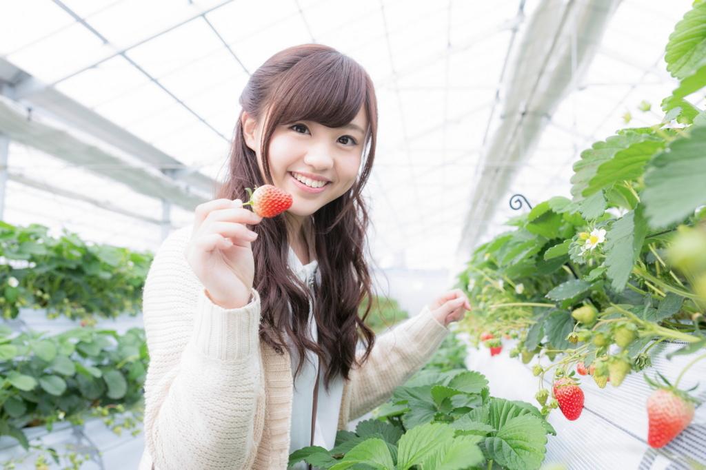 f:id:yusuke1040:20161123234051j:plain